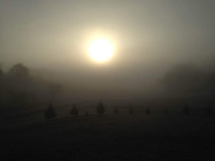 Spring 17 sunrise fog