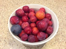 bowl of plums2