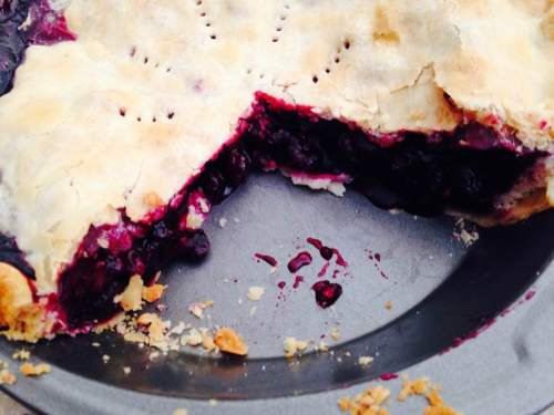 July Blueberry Pie 2017