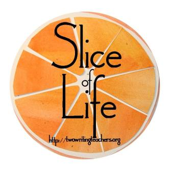 slice-of-life_individual