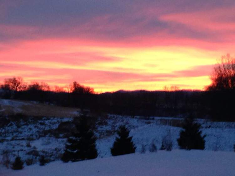 January Sunrise 18