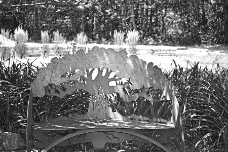 treebenchsculpture16dblackwhite