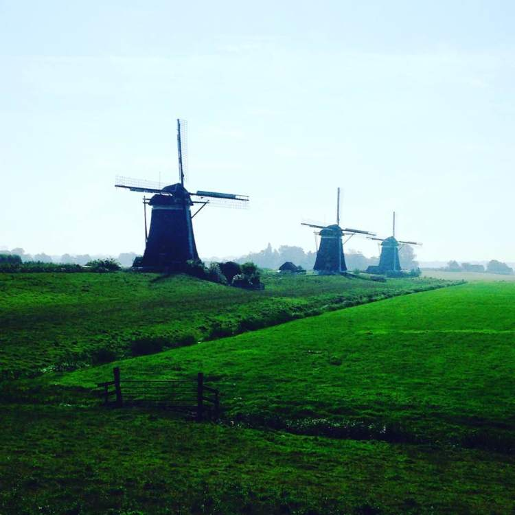 3 windmills holland2016