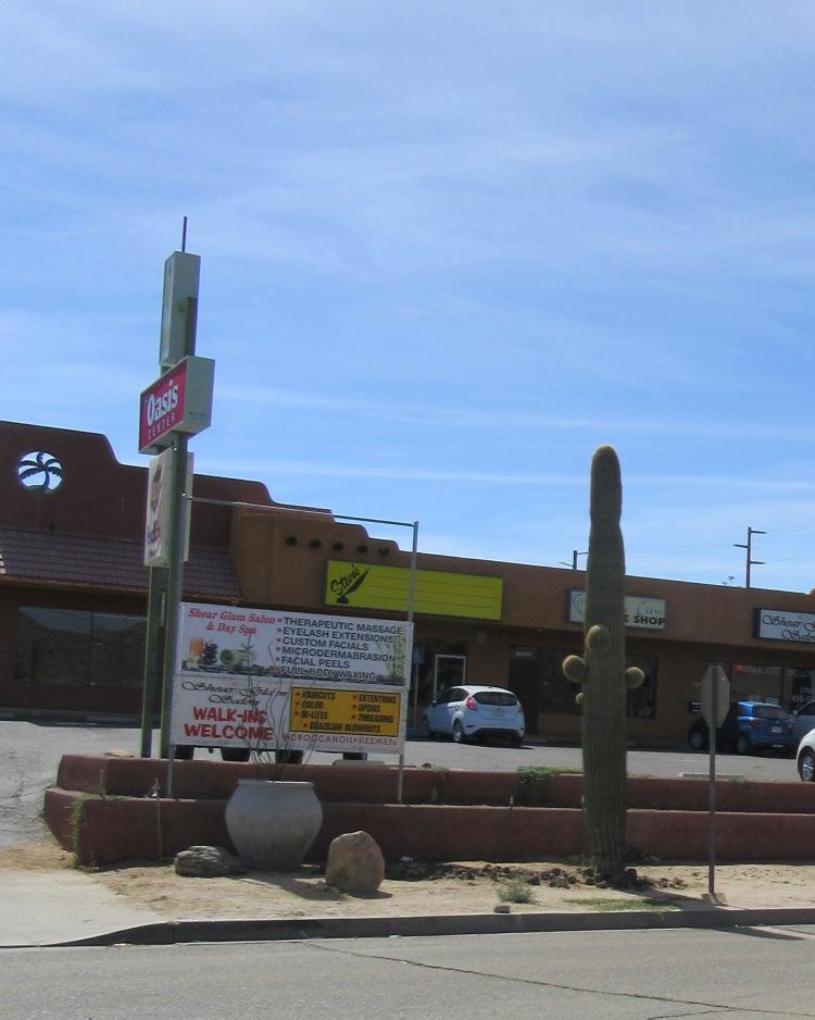 saguaro2244