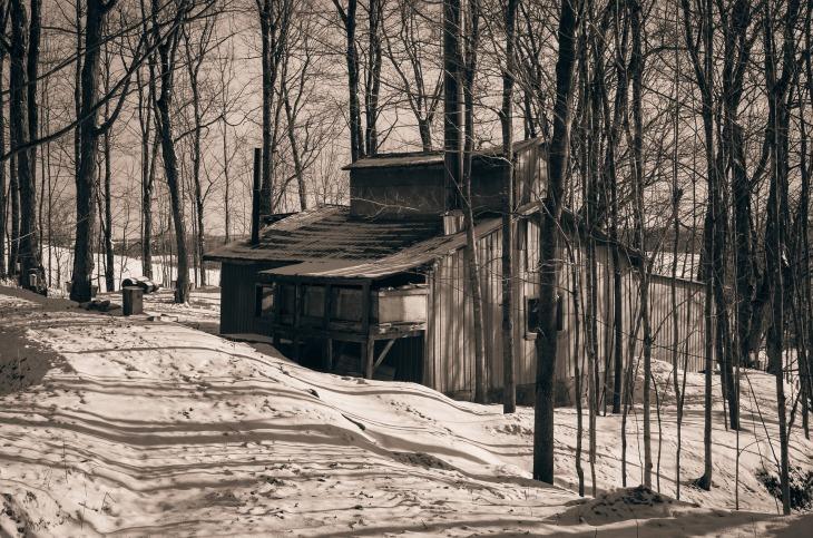 cabin-1866818_1920