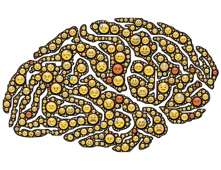 brain-954816_1920.jpg