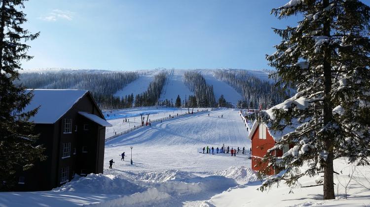 snow-3338751_1920