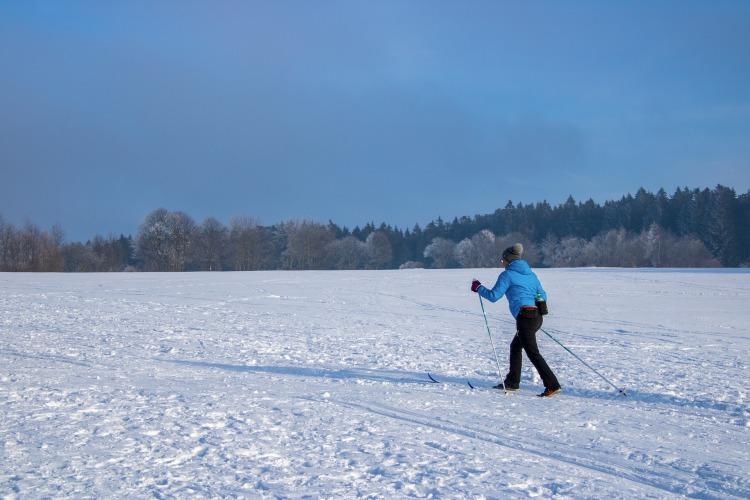 winter-4656411_1920