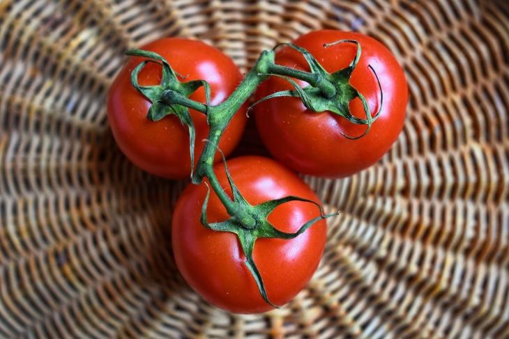 tomato-3520004_1920.jpg