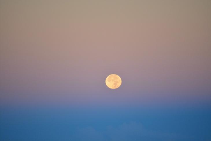 moonsethaleakala443